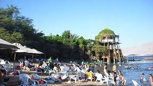 Dolphin Reef Israel