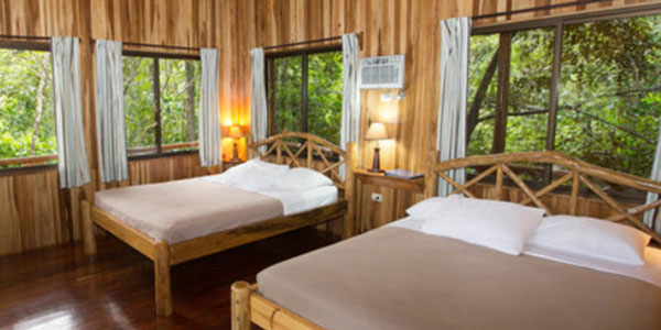 Tree Houses Hotel