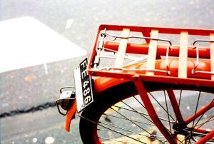 bicyle ridin