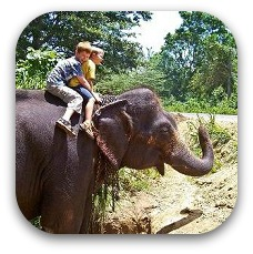 kids riding an elephant