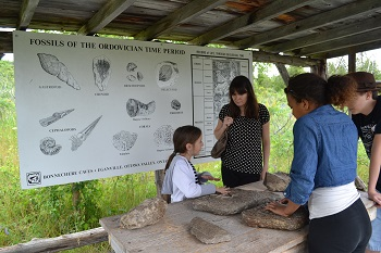examining the fossils in eganville