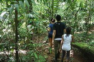 kids in the costa rica rainforest