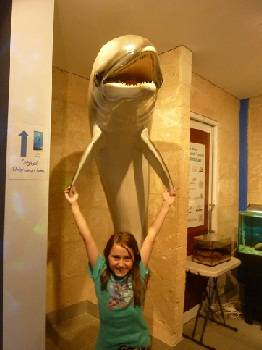 Inside the Dolphin Museum in Bunbury