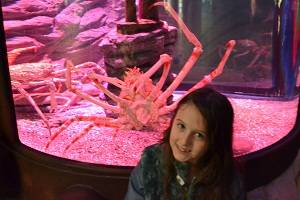 girl in front of pink crab