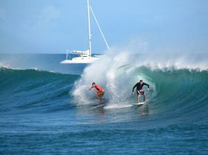 surfers in hawai