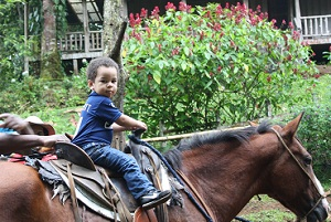 horse riding costa rica toddler