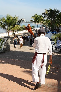 Shrimp vendor on the Malecon in PV