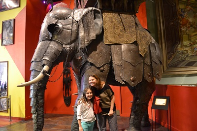 elephant at ripleys nyc