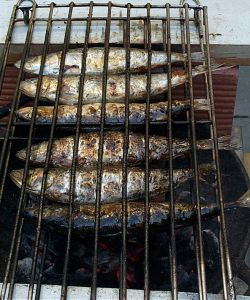 sardines on a grill in portugal