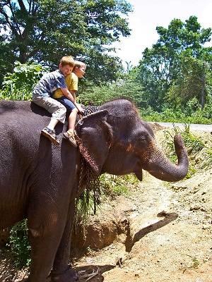 riding on an elephant in sri lank