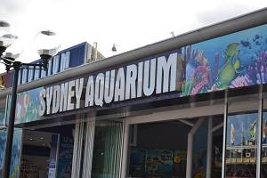 sydney aquarium sign