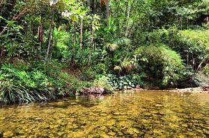 thai river tour