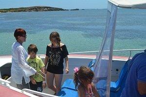 boat on dolphin encounter