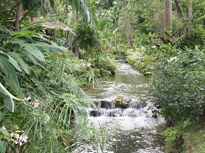 Ocho Rios Attraction-Coyoba Gardens