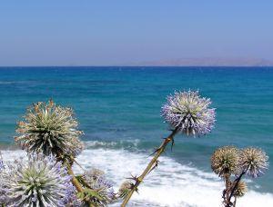 ocean view greece