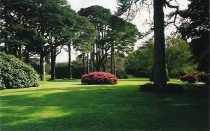 Dublin Garden