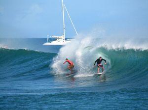surfers in hawai