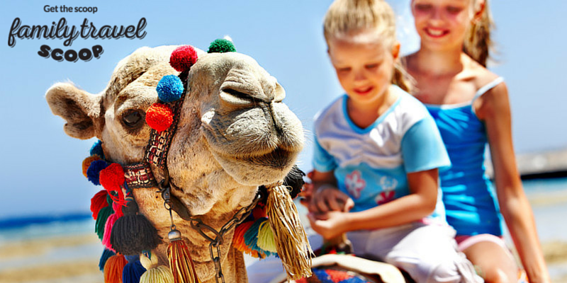 Kids riding camel in Egypt