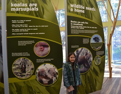 sign at koala park on phillip island