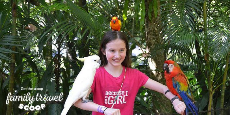 Girl in bird park in Kuala Lumpur