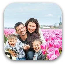 netherland tulip garden
