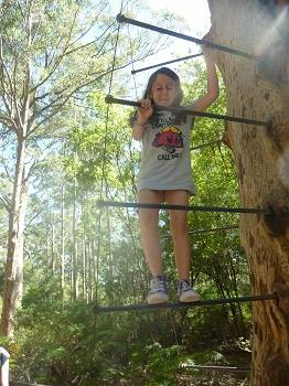 young girl climbing the Gloucester tree in Pemberton