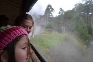 looking out the window on the puffing billy