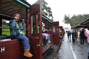 sitting legs out on the puffing billy railwa
