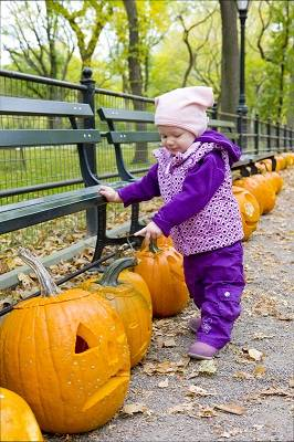 a toddler in central park playing with pumpkins